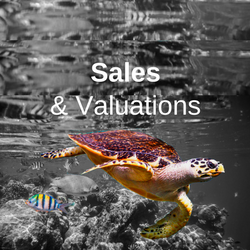 Sales and Valuations